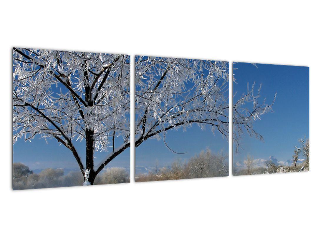 Tablou - peisaj înghe?at de iarnă peisaj