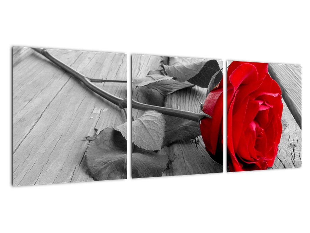Tablou - trandafir cu flori ro?ii