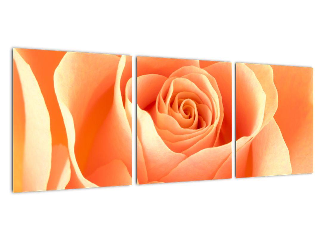 Tablou - trandafiri portocalii