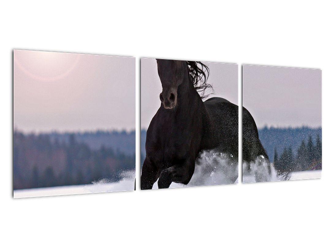 Tablou - cai în zăpadă