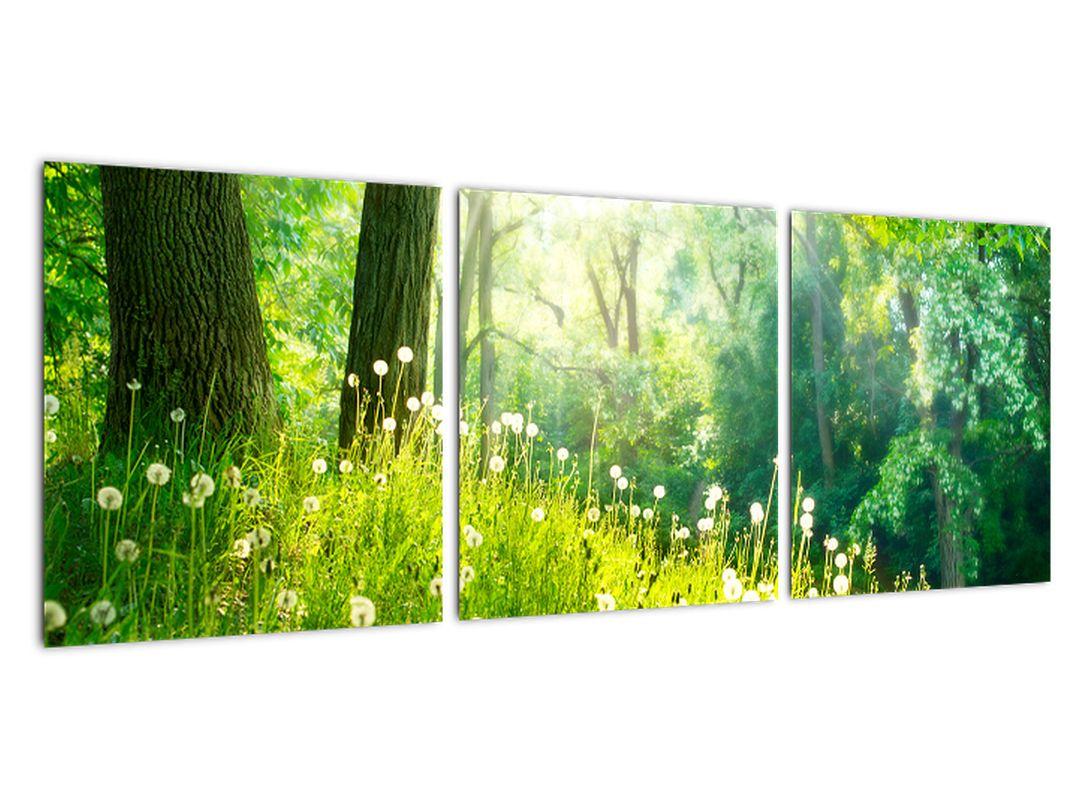 Tablou modern - natură
