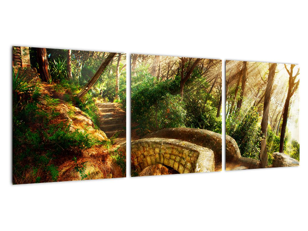 Tablou modern - poteci de pădure