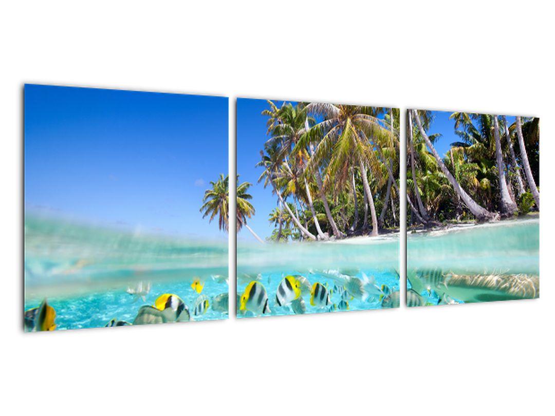 Tablouri - mare tropicală