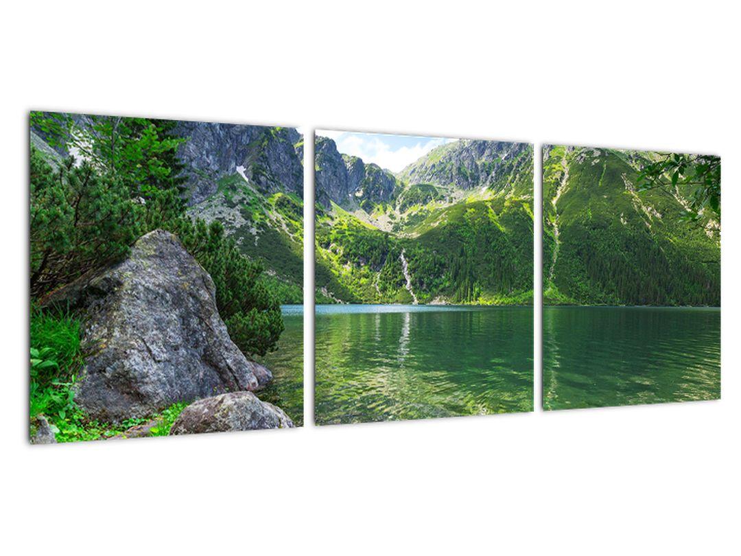 Tablouri - natură montană